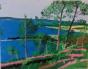 tableau paysages paysage marin bretagne : kerfany les pins