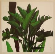 tableau fleurs arbre bannanier exotic tropic : L'arbre a palabre