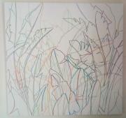 tableau fleurs traits couleurs multicouleurs bananier maroc trensparence : PLAN
