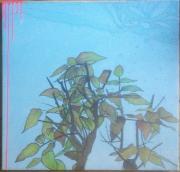 tableau autres arbre fushia ciel feuile : branche coupé