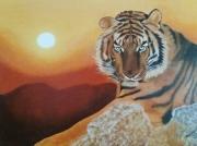 tableau animaux animaux felins tigre predateur : tigre