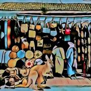 art numerique villes essaouira kangourous shopping : Envie d'un nouveau sac...