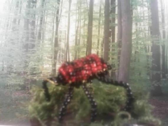 SCULPTURE punaise perles 3D Animaux Assemblage  - punaise des bois