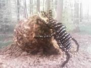 sculpture animaux scarabe perles 3d : scarabé