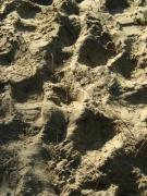 photo sport sable : sable