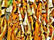 art numerique abstrait bananier tabac feuilles leaves : bananier gelé