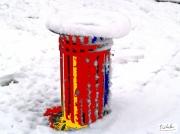 photo : poubelle orange sur fond de neige