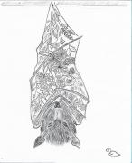 dessin animaux chauvesouris fleurs animaux plantes : Bat