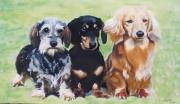 dessin animaux trois amis pastel estompe : Les trois  Amis
