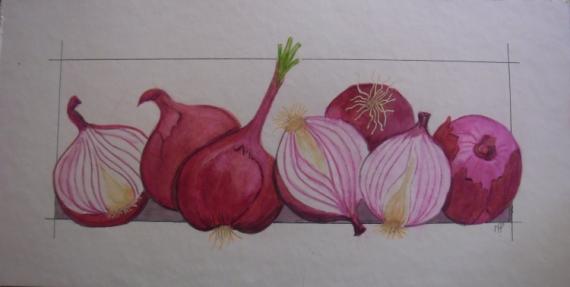 TABLEAU PEINTURE légumes oignons aquarelle Fruits Aquarelle  - oignons roses