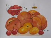 tableau fruits aquarelle fruits botanique vegetal : Fruits d'été