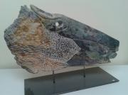 sculpture animaux charentes maritimes la rochelle mer : Canass...on