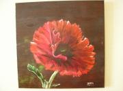 tableau fleurs fleur pavot coquelicot : Le Pavot