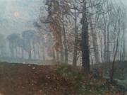 tableau paysages : Vieux chênes dans la brume