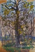 tableau paysages : Grand chêne devant paysage