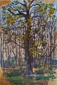 Grand chêne devant paysage