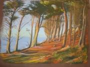 tableau paysages : Pointe du Dourven
