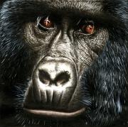 tableau : Gorille