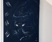 panthera black
