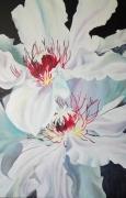 tableau fleurs : fleurs blanches