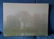 photo paysages ile de france parc brouillard brumes : Jour de brouillard