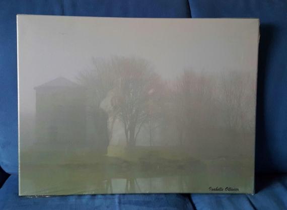PHOTO Ile de France Parc Brouillard Brumes Paysages  - Jour de brouillard