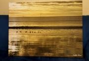 photo marine ocean mer paysage marine : Plage aux reflets