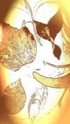 photo abstrait oiseau vol feuillage automne : vol  automnal