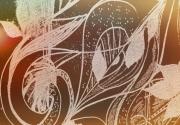 photo abstrait musique cle de sol graines solfege : graines et solfège