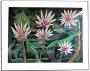 tableau fleurs impression nympheas fleurs blanches manet : LES 5 LOTUS