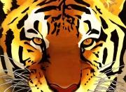 tableau : Le tigre