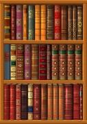 art numerique nature morte livres trompe l'œil litterature auteur : La bibliothèque des livres classiques